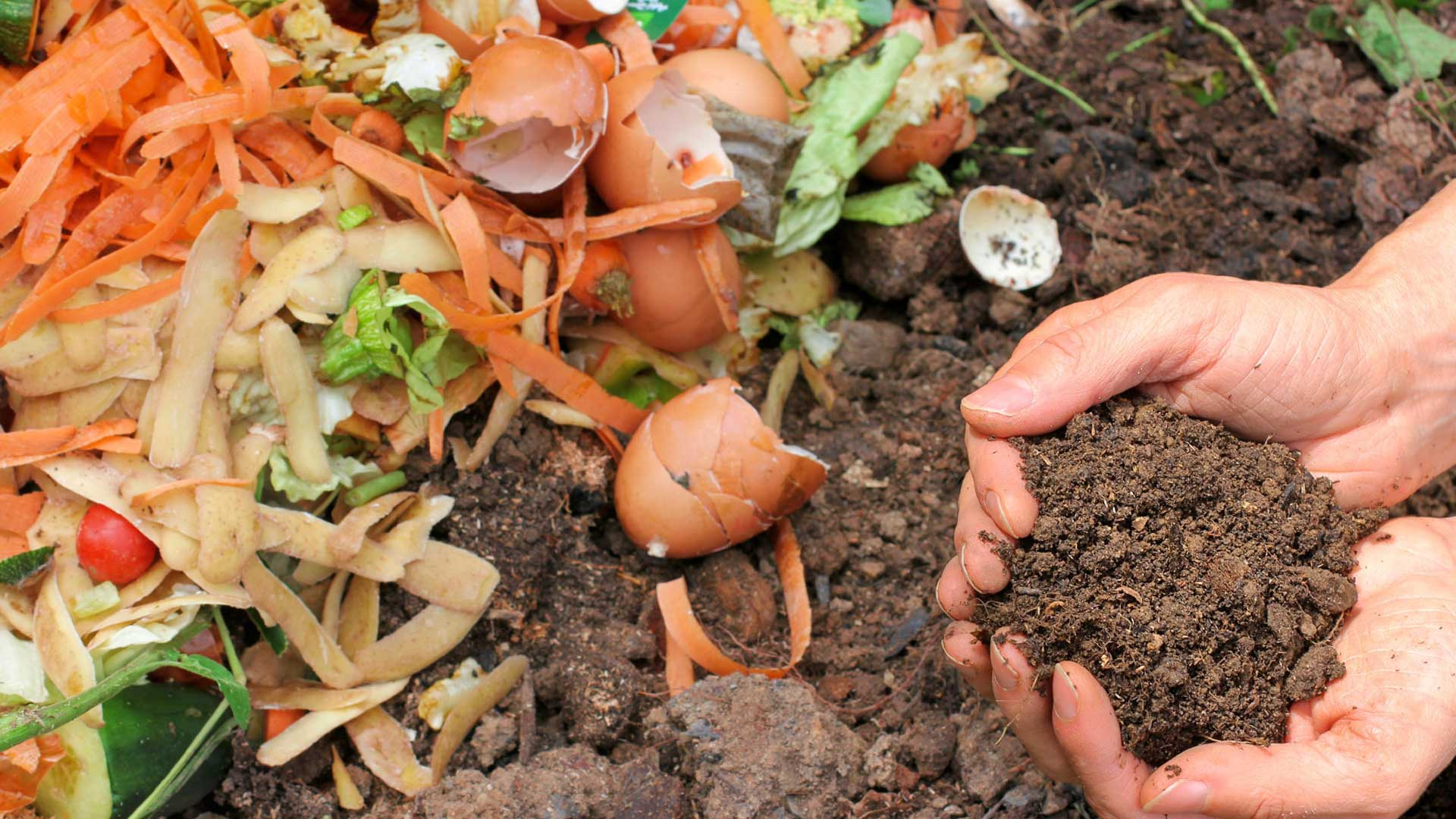 How to make your own compost fertiliser
